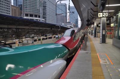 2020年10月大人の休日倶楽部パスの旅2(東北新幹線で東京から宮城へ)