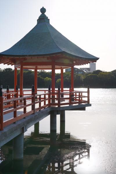 20201005-3 福岡 すっかり西陽の大濠公園散歩