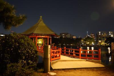 20201005-5 福岡 大濠公園、夜の部です