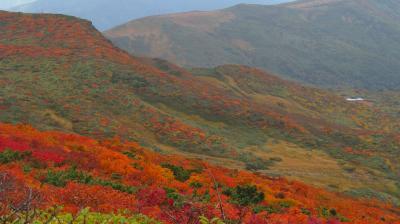 GO TOで神の絨毯、栗駒山(登山編)