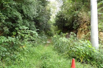 上野庭北の切通
