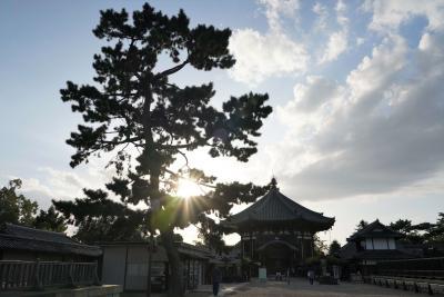 秋には早い奈良を訪ねて