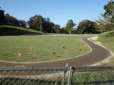大高緑地公園に人工芝の広場が出来ました。
