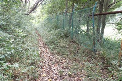 上永谷町境の山道
