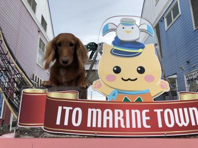 Go Toキャンペーンで伊豆高原わんわんパラダイス 到着までです。