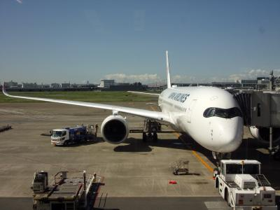 JAL最新鋭機で行く九州横断ドライブ紀行 その2 A350のクラスJに乗って福岡へ & 九州のSAと道の駅とスーパーに寄ってから宝泉寺温泉へ