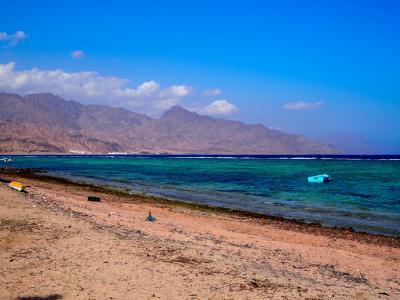 青い紅海、終日のたりのたりかな