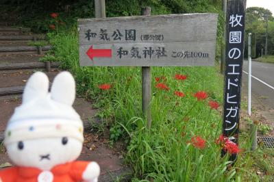 グーちゃん、霧島温泉郷へ行く!(和気神社の絵馬と五反田のエバ・・・。編)