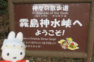 グーちゃん、霧島温泉郷へ行く!(霧島神宮は有象無象でいっぱい!編)