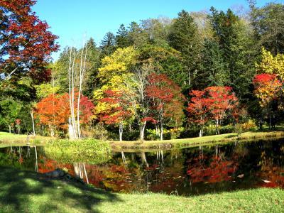 バスツアー2泊3日で秋の道東へ 初日は札幌~阿寒湖まで