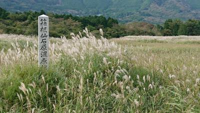 登山と高原と神社仏閣の旅≪1日目≫②仙石原すすき草原