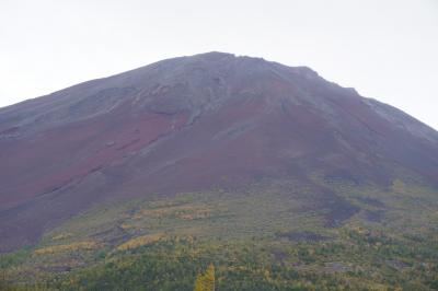 富士五湖から勝沼ぶどう郷へ(二日目)~富士五湖や溶岩洞窟だけじゃ不完全燃焼。富士五合目で感じる富士山はやっぱりリアル、眺めも空気も別格です~