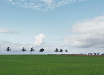 20 北海道・秋爽の頃 メルヘンの丘をたずねて女満別をぶらぶら歩き旅ー2