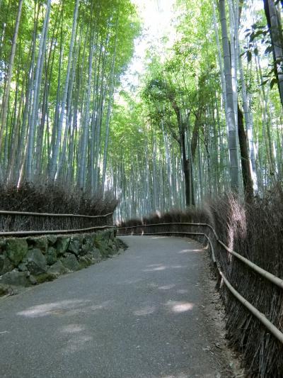 ほっこり京都 女3人旅