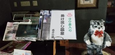 【トクだ値 第5弾】台風にも負けず! 新潟・アブラ湯巡りの旅(西方の湯・塩の湯温泉・咲花温泉)