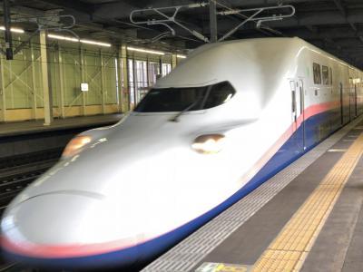 2020年10月大人の休日倶楽部パスの旅10(上越新幹線ほか)