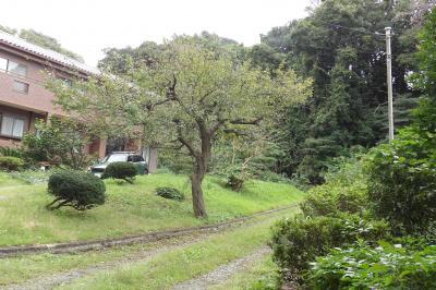 飛石集落(横浜市栄区小菅ヶ谷4)