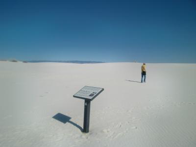 ニューメキシコ州 ホワイトサンズ国立公園 ー デューン ライフ ネイチャー トレイル