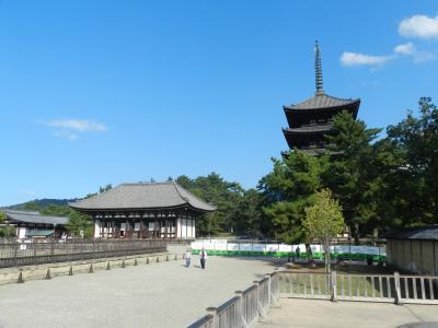 『旬彩ひより』でランチ~奈良町&奈良公園を散策◆7ヶ月ぶりのお泊まり旅行は『変なホテル奈良』《プロローグ》