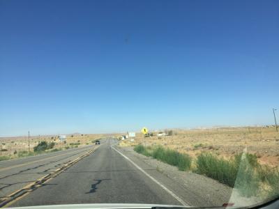 アリゾナ州 ティースノスPOS