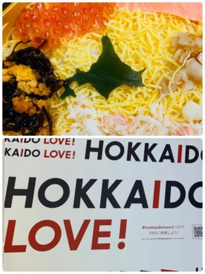 HOKKAIDO LOVE! 6日間周遊パス 北の大地を駆け抜ける!(前編)