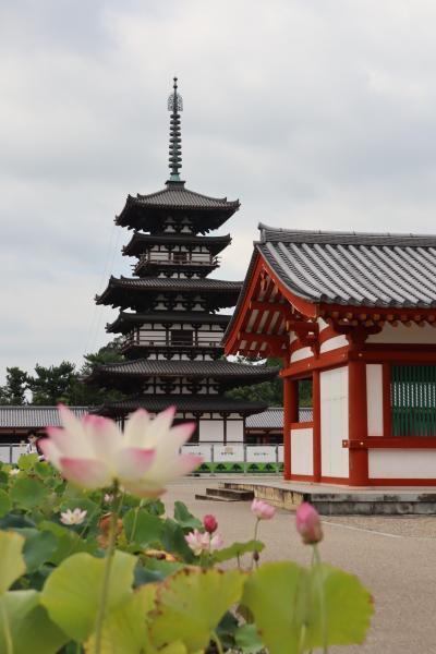 ふらふらと和歌山奈良へくるま旅 その5 奈良