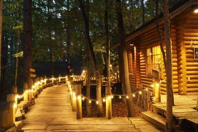 ワーケーションにトライ!暮らすように旅した秋の美瑛&富良野〈3〉妖精の棲む森へ