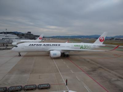 新型コロナなのになぜかいるエバー航空にJALA350-900の3号機編