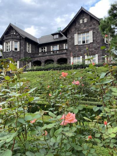 巣鴨地蔵通りと古河庭園