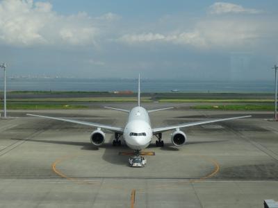 ホテル2泊と飛行機往復2人分で3万円!?  GoToトラベルで福岡から横浜へ【親子で東京往復記2020年10月編その1】