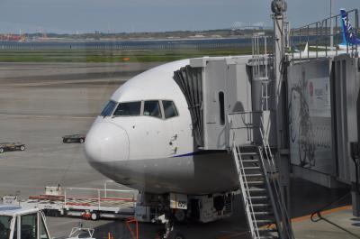2020年10月兵庫県私鉄落葉拾いの旅1(羽田乗り継ぎで大阪空港へ)