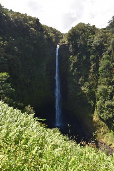 プライドオブアメリカ号に乗船 Vol.4 2020 ~ ハワイ島 ヒロに上陸 ~