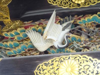 秋の京都 初めての二条城は庭園も御殿も広かった