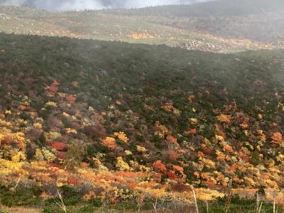 秋を楽しみたい!安達太良山へ。(浄土平も)