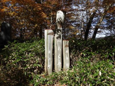 群馬県の坤六峠に紅葉を見に!17回目です。
