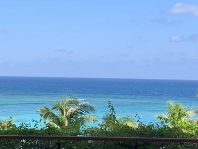 Gotoで再び沖縄へ 美らオーチャードゴルフ倶楽部~ブセナテラス~メインダイニング「ファヌアン」 その①