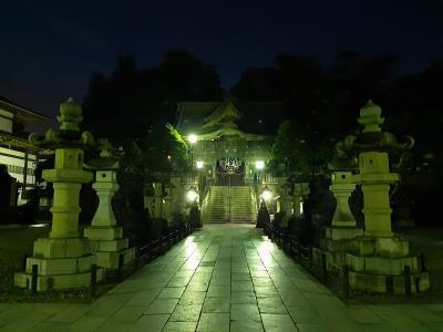 ~出張後ぶらり旅~ 夜でも成田山には参拝できるよ!空いてて快適!