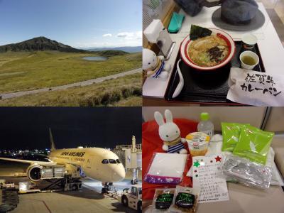 JAL最新鋭機で行く九州横断ドライブ紀行 その4(終) 阿蘇を巡って熊本空港で搭乗手続きからのJALファーストクラスに乗って福岡から東京へ