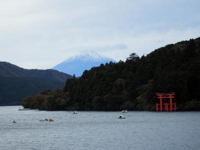 芦ノ湖から冠雪の富士を見よう ~ 箱根1泊旅行