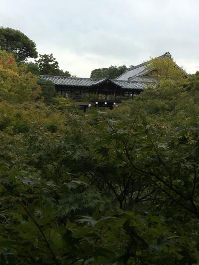 2020年10月 京都散策 秋の秘宝公開巡り