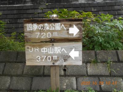 四季の森公園への散歩道