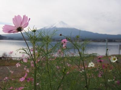 初秋の富士五湖   2020