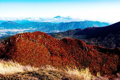 九重三俣山の紅葉 2020