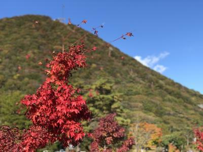 冬が来る前に~!久しぶりの榛名山。