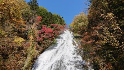 秋の日光  戦場ヶ原~竜頭の滝~華厳の滝