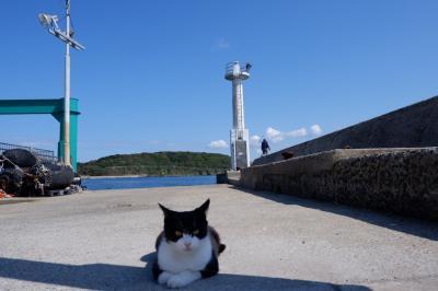 2020年10月 Go To 福岡 2泊3日旅行 <2> パンと相島と猫と香椎線