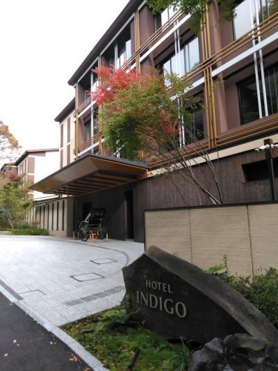 インディゴ箱根、に泊まると『ます釣り』が近い、楽しい。翌日は芦ノ湖の龍宮殿ランチ。