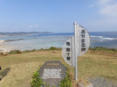 2度目の奄美大島!