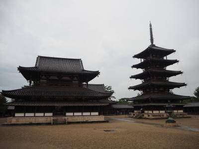 オトコナラ~2020夏休みは35年ぶりの奈良~ ①初日、おおさか東線経由で土砂降りの法隆寺・法起寺へ