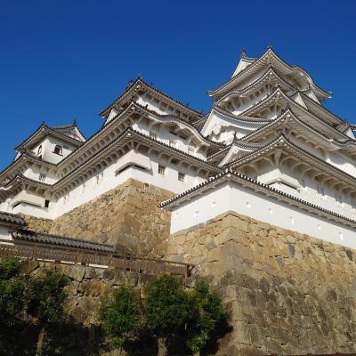 姫路城とあべのハルカス。天に向かって伸びる!